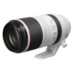 Obiettivo Canon RF 100-500mm f/4.5-7.1 L IS USM per mirrorless EOS R