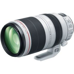 Obiettivo Canon EF 100-400mm f4.5-5.6L IS II USM