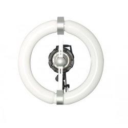 Quantuum Fomex N-Light 300W solo lampada